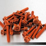 Aprilia engine casing bolts - Race spec