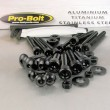 Pro Bolt aluminium 100 piece workshop assortment