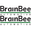 BrainBee Lettering